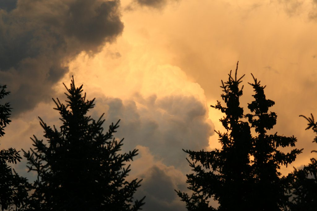 the light of the sun plays on the clouds, as seen through a set of trees