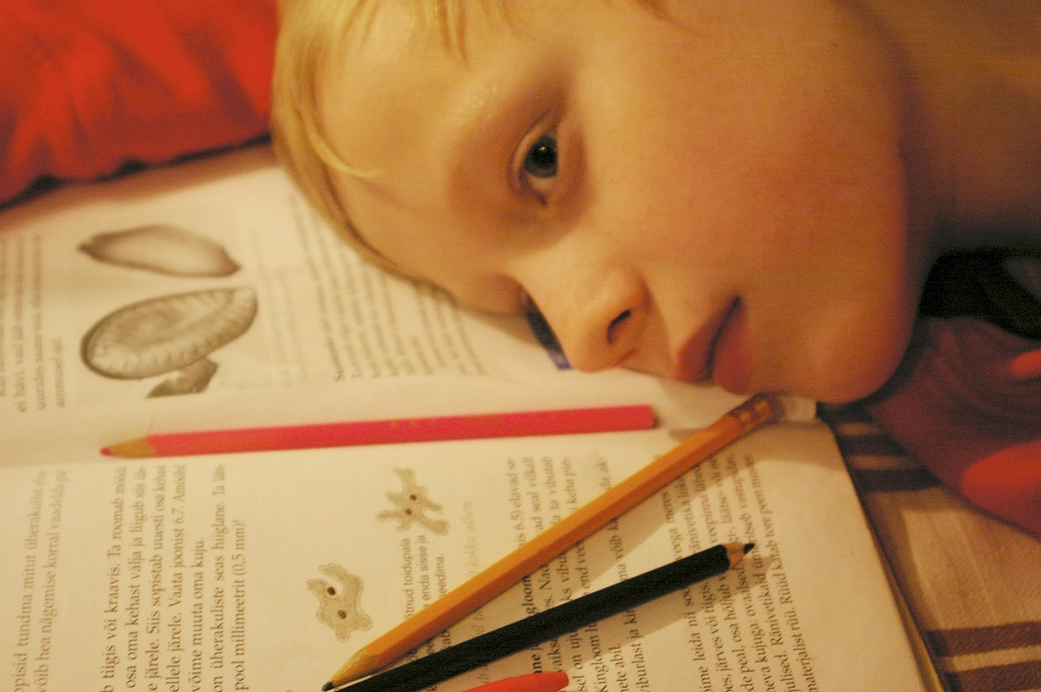 a child lays their head on their homework