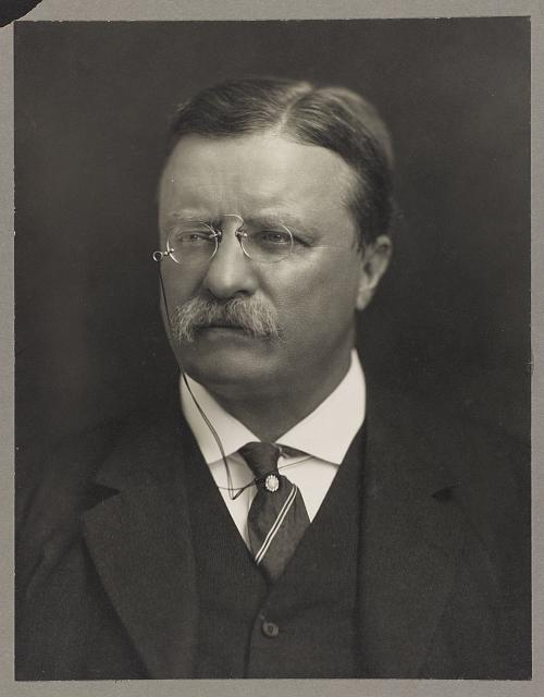 a portrait of Theodore Roosevelt