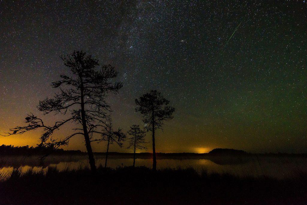 The Milky Way Galaxy spread across a rural sky