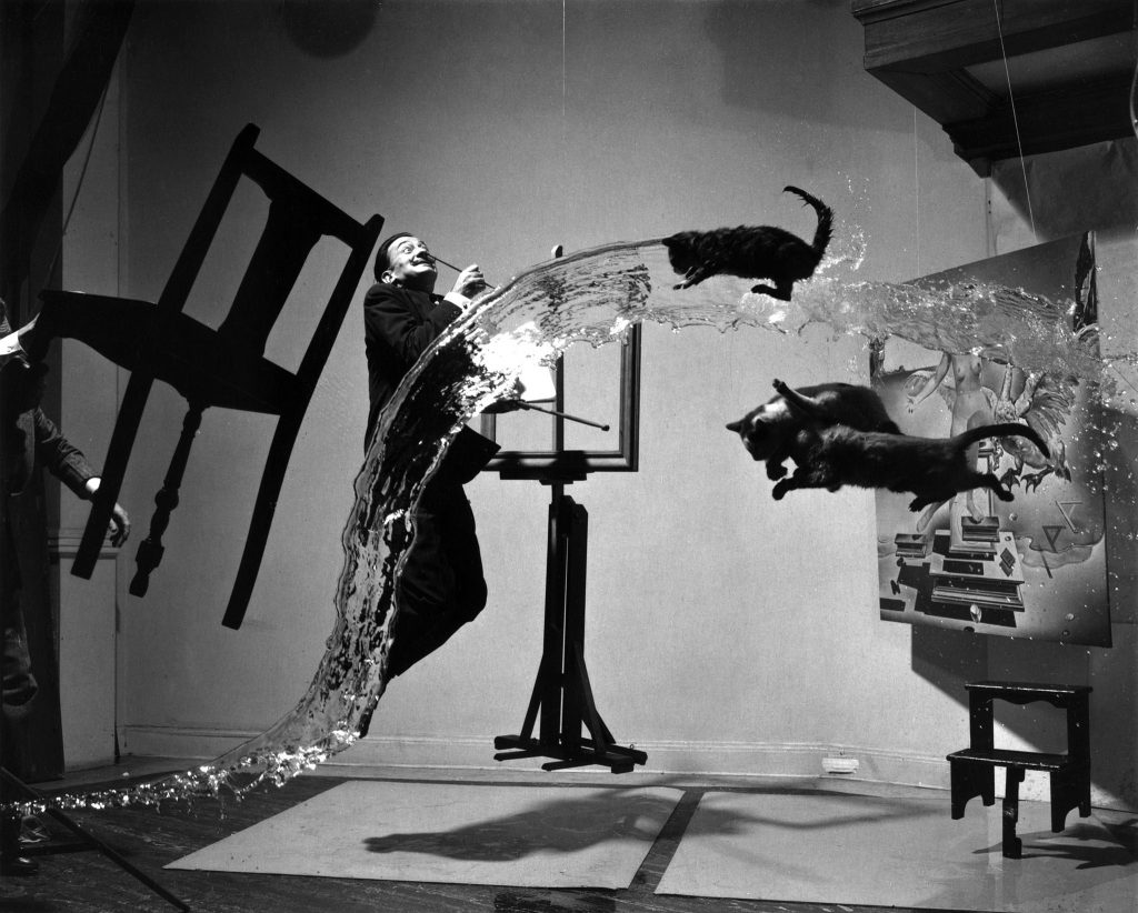 Salvador Dali floating through a room with cats