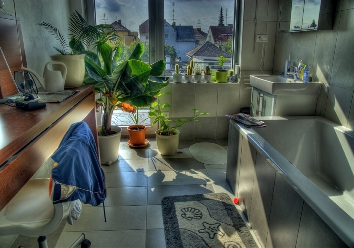 All is not all it seems in a bathroom