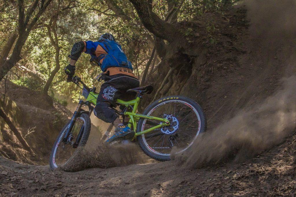 a dirt biker leaves a path through a mountainous forest